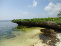 4.5 Acre Coral Beach Plot in Watamu, Kenya
