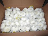 2013 crop the fresh natural white garlic price