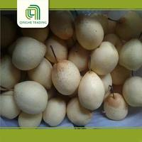 wholesale bulk fresh china best quality ya pear