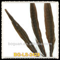 Brown Pheasant Tail Feather