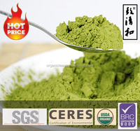 Hot selling organic matcha USDA with competitive price green tea powder