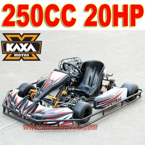 20HP 250cc Adults Racing Go Kart for Sale