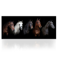 Wall Art Five Horses Printed Canvas Wall Picture HD Living Room Animal Wall Poster Black Brown Horse Modern Home Decor