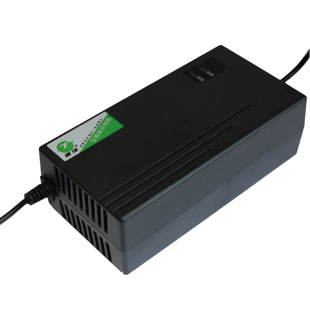 48 Volt 20A Electric Bike Battery Charger
