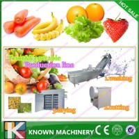 practical popular fruit and vegetable/food processing device/production equipments