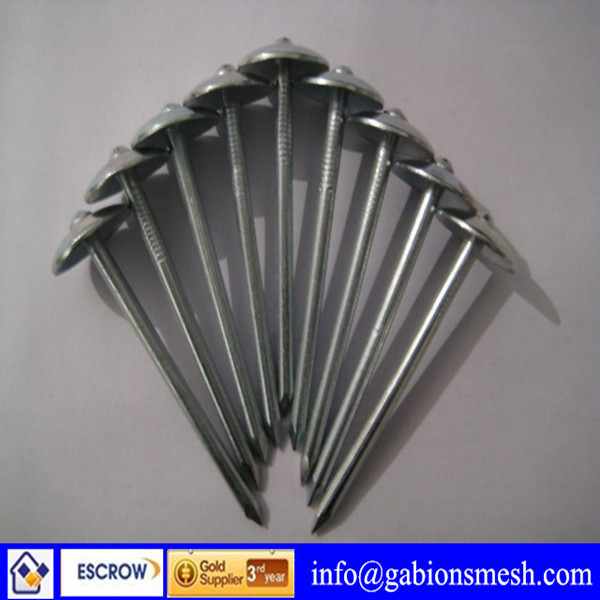 High quality/low price rubber washer roofing nails(ISO9001,CE,SGS)