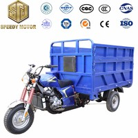 China top sale pertol cargo tricycle factory