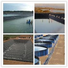 Quality basal liners for landfill and solid waste impoundment barramundi fish farm barco