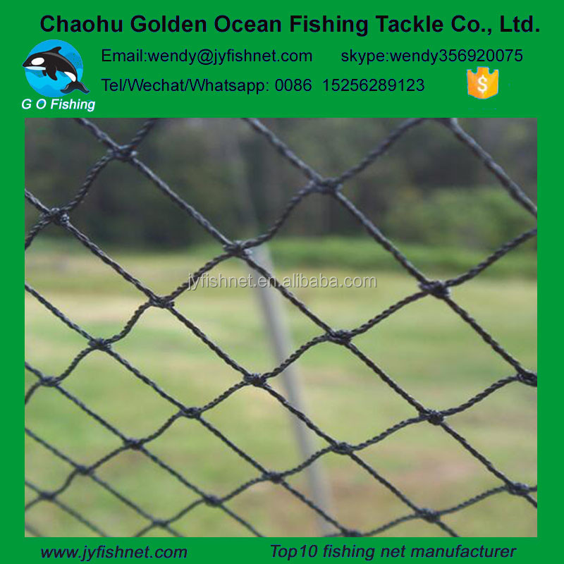 Cheap China agricultural nylon knotted mesh anti bird netting
