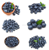 Natural Blueberry Fruit Flavors And Can