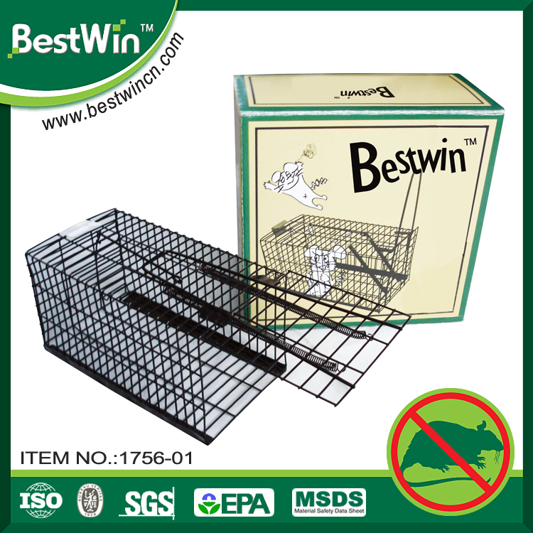 BSTW professional pest control factory manufacture rat glue