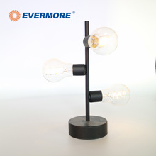 EVERMORE SImple Style Cordless Decorate Table LED Lamp With Built-in Battery Box