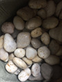 landscaping pebbles polished white stone