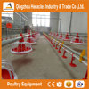 Heacles Trade assurance poultry farming equipment exhaust fan /cooling pad /equipment poultry for chicken broiler farm