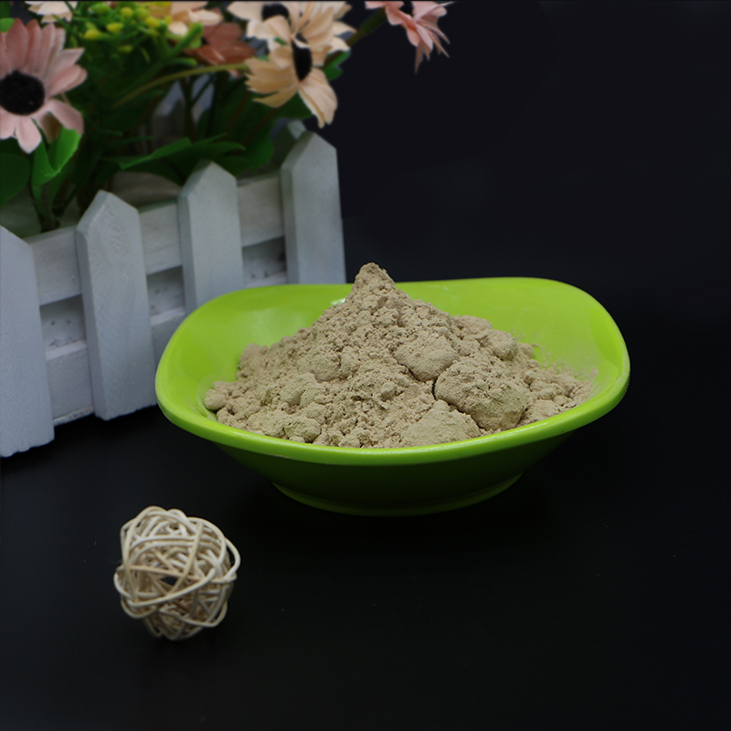 Hot sale green food mushroom powder plant extract