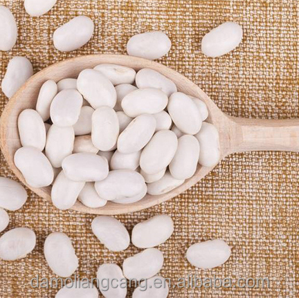 Many Kinds Of White Navy Bean Origin In Northeast China