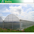 The Cheapest Sainpoly Agricultural Film Covered Multi Span Greenhouse