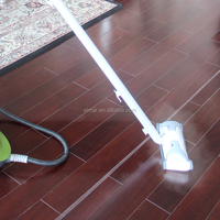 Powerful steam cleaner whith floor mops with Rohs CE