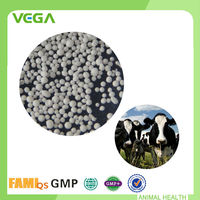 Feed Grade Broad Spectrum Compound Acidifier Cattle Feed Formula