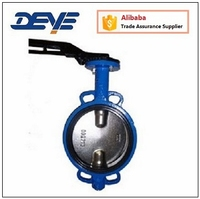 Double Shaft without Pin Type Wafer CI Cast Iron Butterfly Valve with EPDM seat