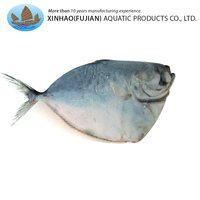 Hot sale good quality frozen whole round moonfish