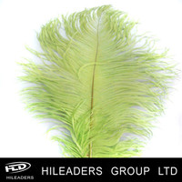 Hot Sale Dyed Drabs Ostrich Feathers