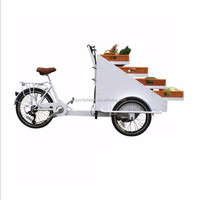 2016 Holland cheap 3 wheel electric tricycle cargo bike price/cargobike factory/kids cargo tricycle bicycle
