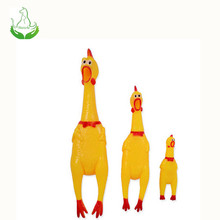 Chicken screaming pet toy for dog chew
