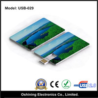 custom logo business card shaped plastic 4gb 8gb wholesale usb flash driver (USB-029)