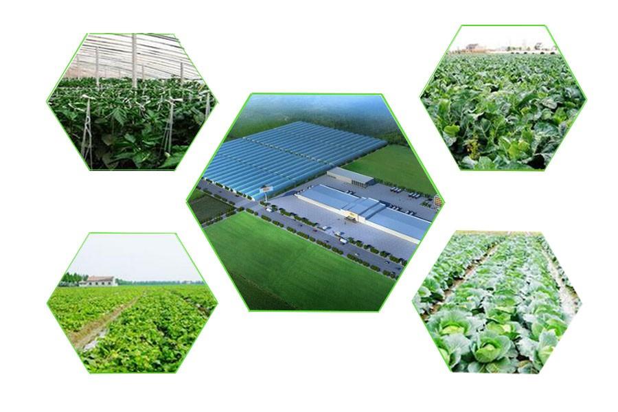 farm base.jpg