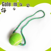 Top Quality New Style Soft Squeaky Pet Toy For Dogs
