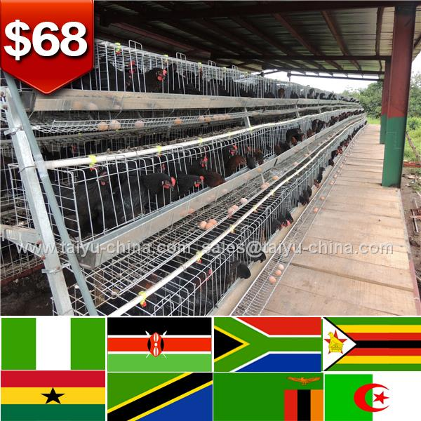 128 birds Kenya Zimbia Uganda pet house farm