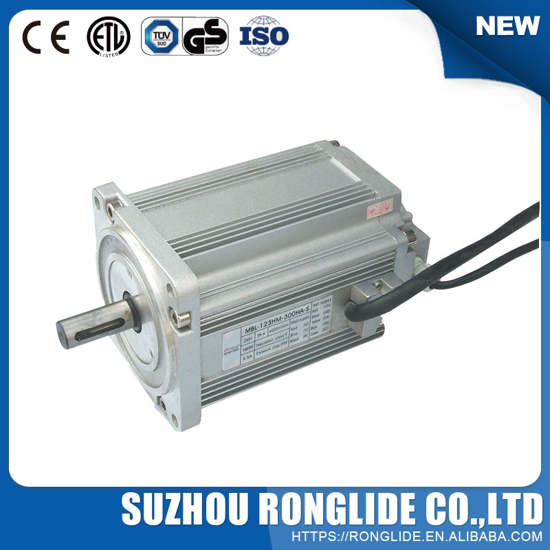 Hot Selling Made In China High Speed 20000Rpm Micro Dc Motor