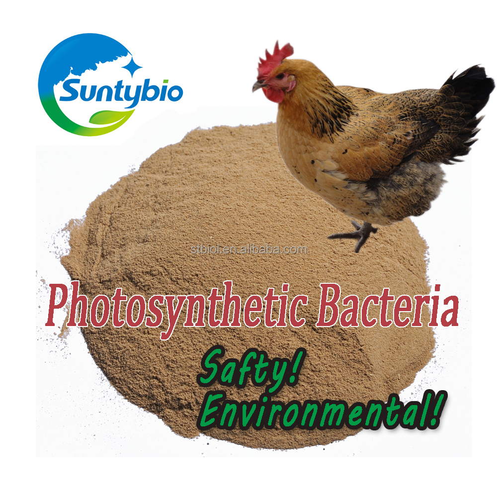 Nutritional Animal Feed Additives Feed Grade Aquaculture Photosynthetic Bacteria For Poultry Chicken