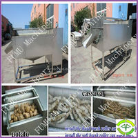 Popular in market of potato cleaning and peeling machine