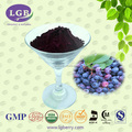 Blueberry p.e /Anthocyanin 5%-70%/wild blueberry