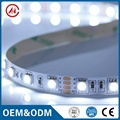 DC12V 60LEDs/m 5050/2835 programmable RGB LED strip light