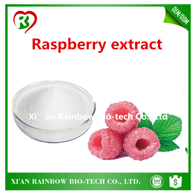 New design Raspberry leaf extract/Raspberry seed extract Raspberry ketones 99% pomegranate fruit peel extract/ellagic acid