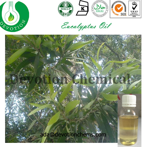 100% Pure Natural high quality and best price eucalyptus oil by china manufacturer