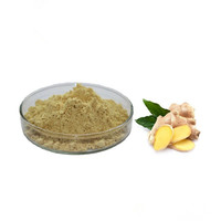 Chinese fresh ginger extract 100% natural plant extract Ginger Root Extract