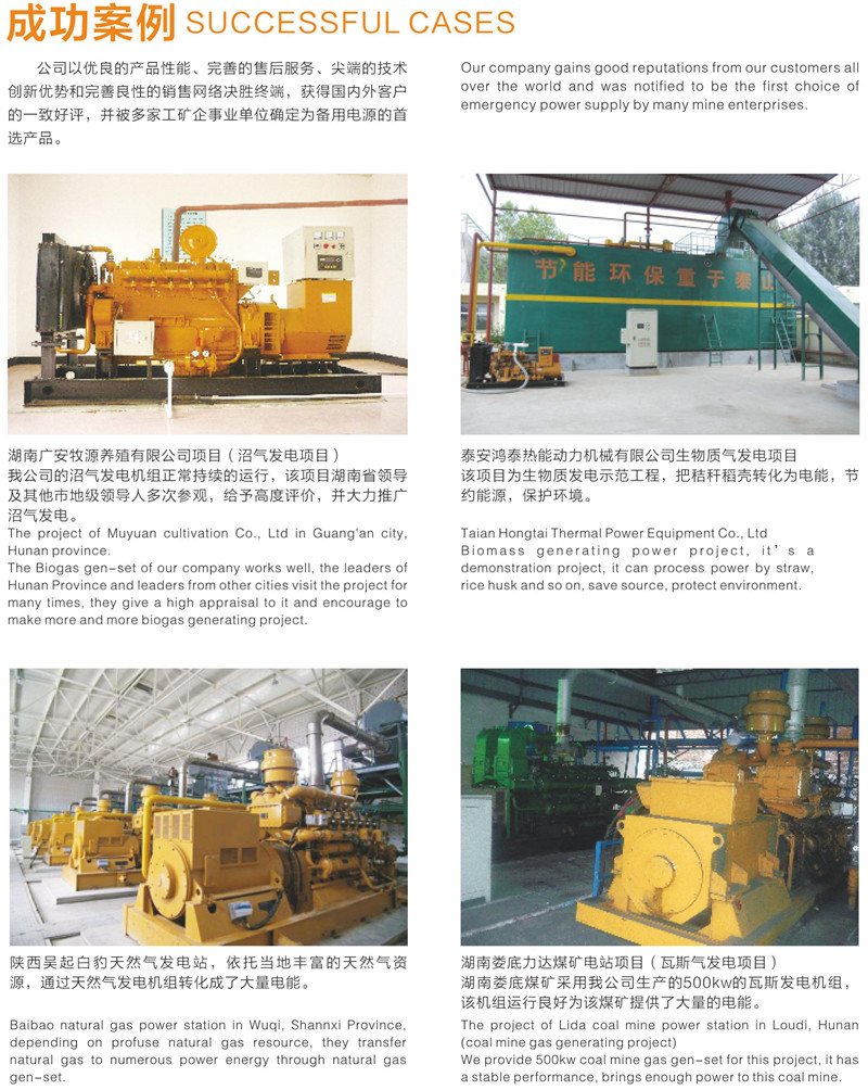CE ISO Factory Cow Waste/Sewage /Landfill 50-700KW Biogas Generator Power plant Alternative Energy for sale