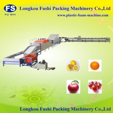Hot Sale Fushi Brand CE and ISO 9001 fruit sorting machine , washing waxing and grading machine