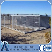 large temporary fence for dog