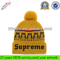 Customized Pom Pom Wholesale Jacquard Long cuffed winter ski beanie hat
