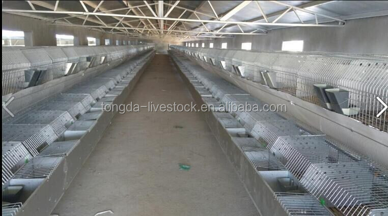 Best quality 4 tiers 24 rabbits commercial rabbit cages ISO certificate inside rabbit cages