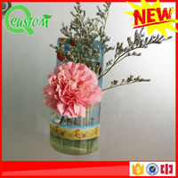 2015 promotional transparent plastic hanging basket hanging flower pot with chain