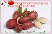 Wholesale China High Quality wholesale peanuts Prices