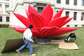 giant inflatable lotus,inflatable city decoration flowers