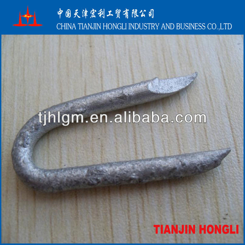 Hot dipped galvanized u type nail
