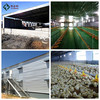 animal husbandry /poultry farm equipment steel structure design,manufacture and install